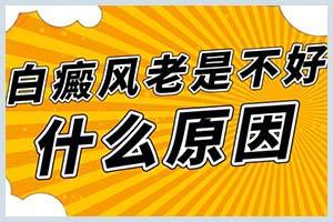 郑州西京在疫情高风险区吗-什么时候能恢复正常门诊